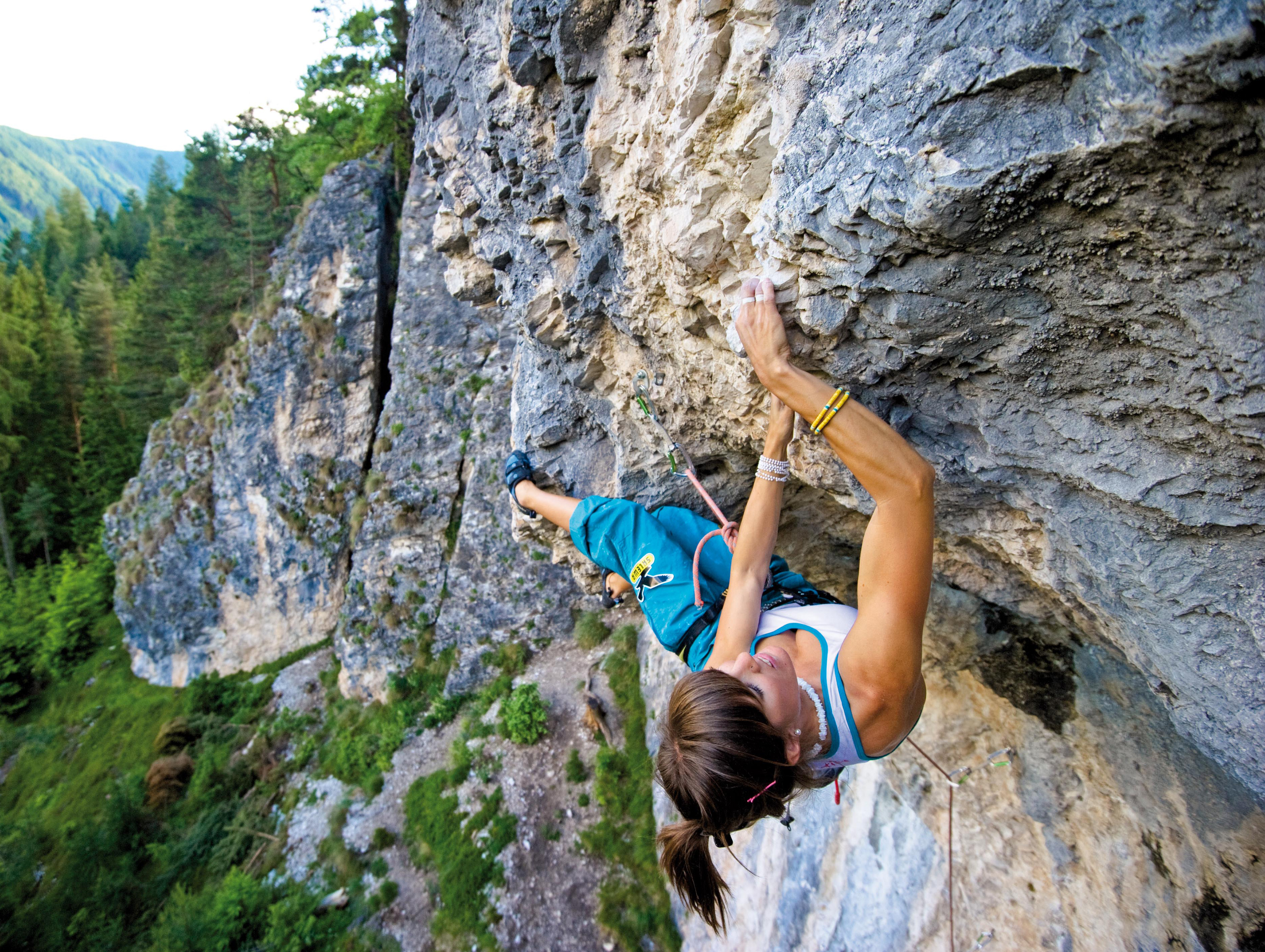 Climbing - definition of climbing by The Free Dictionary